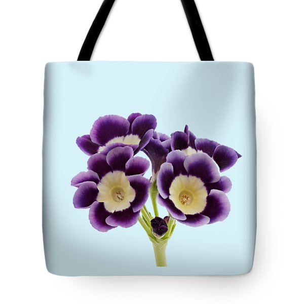 Tote Bag featuring the photograph Blue Auricula On A Transparent Background by Paul Gulliver