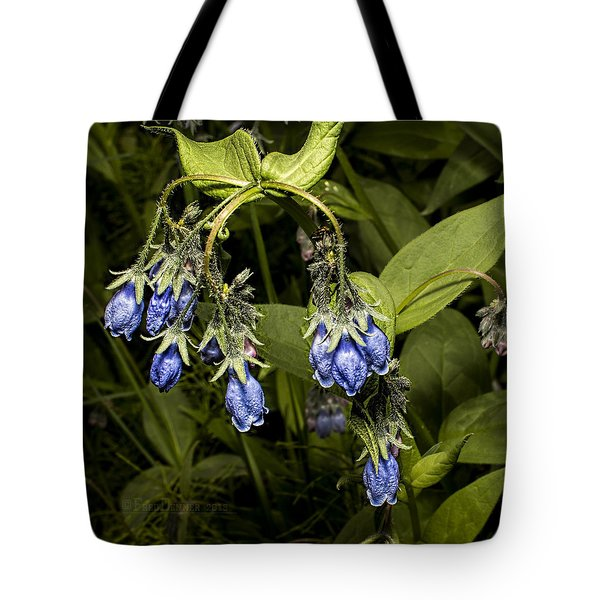 Blue Bells 2015 Tote Bag