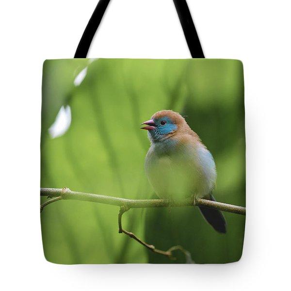 Blue Bird Chirping Tote Bag