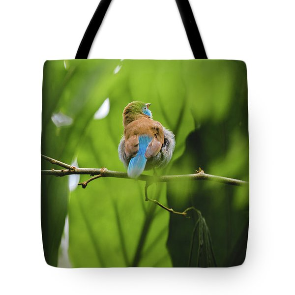 Blue Bird Has An Itch Tote Bag