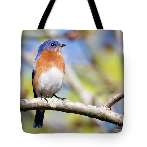 Tote Bag featuring the photograph Blue Bird by Ricky L Jones