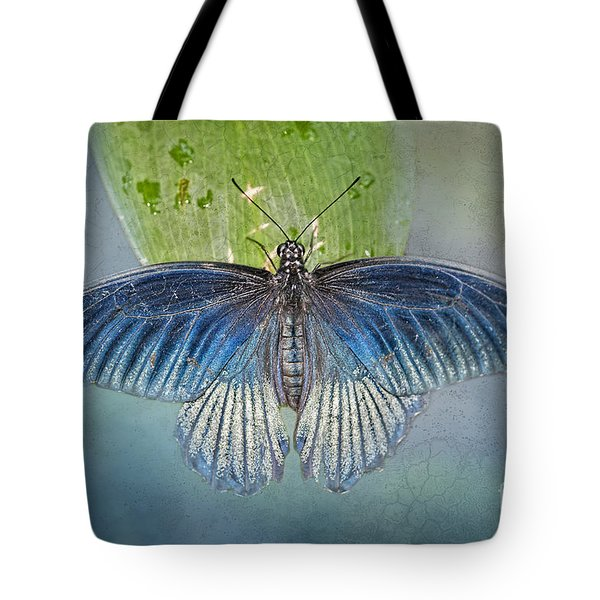 Blue Butterfly On Blue Tote Bag