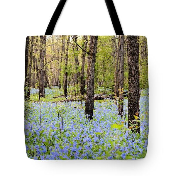 Blue Carpet Tote Bag