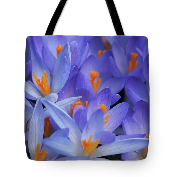 Blue Crocuses Tote Bag