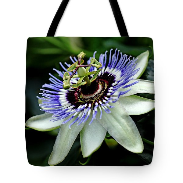 Blue Crown Passion Flower Tote Bag by Debbie Oppermann