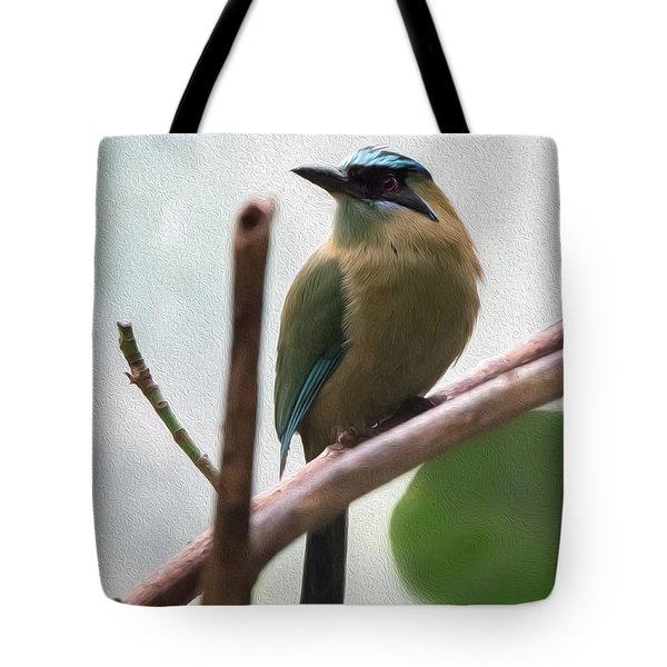 Blue-crowned Motmot Oil Tote Bag