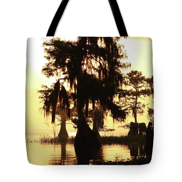 Blue Cypress Yellow Light Tote Bag
