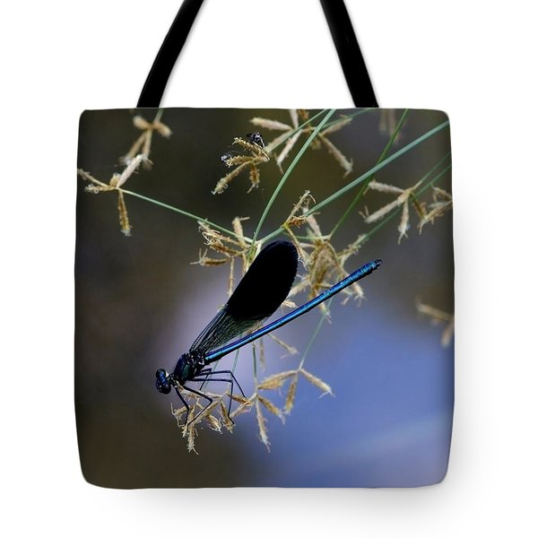 Blue Damsfly Tote Bag