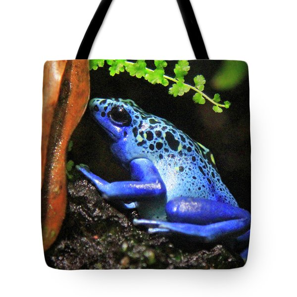 Blue Dart Frog Tote Bag