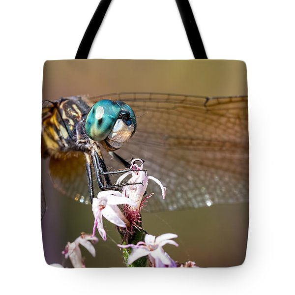 Blue Dasher Dragonfly Resting Tote Bag