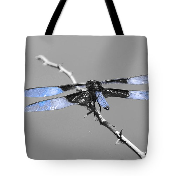 Blue Dragon Tote Bag by Cindy Manero