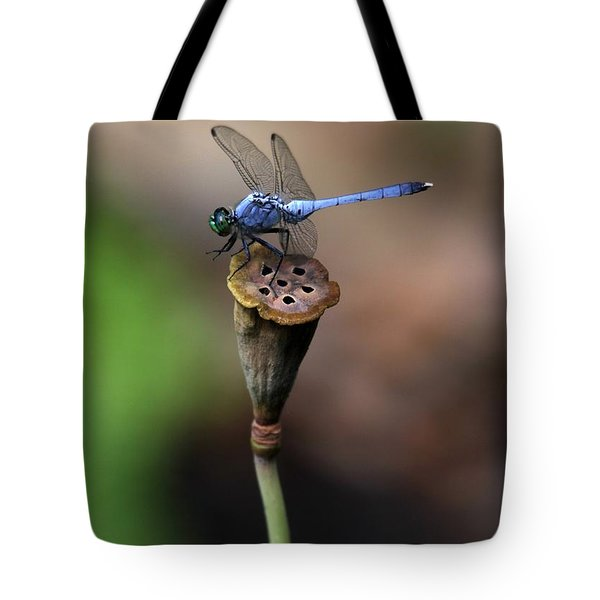 Blue Dragonfly Dancer Tote Bag