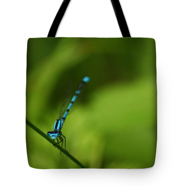 Tote Bag featuring the photograph Blue Dragonfly by Ramona Whiteaker