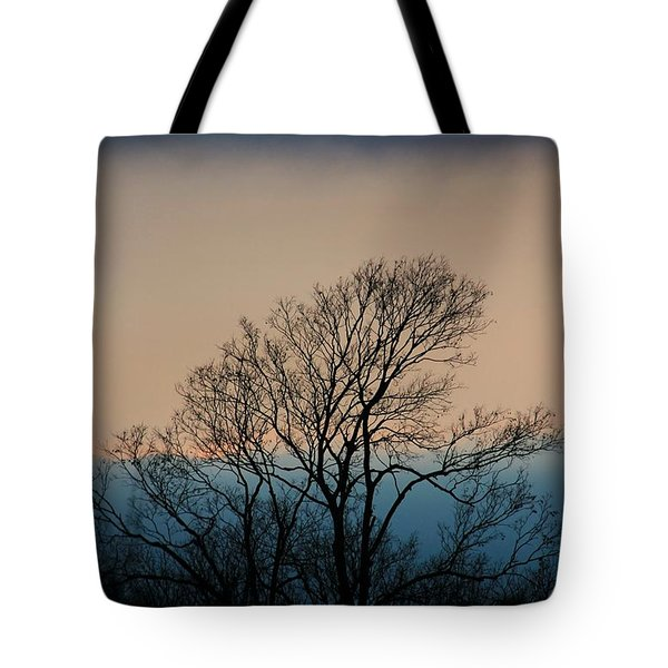 Tote Bag featuring the photograph Blue Dusk by Chris Berry
