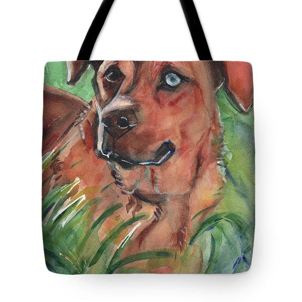 Blue Eyed Dog Tote Bag
