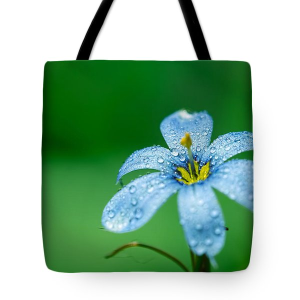 Blue Eyed Grass Flower Tote Bag