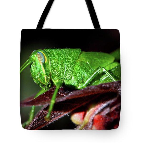 Blue Eyed Green Grasshopper 001 Tote Bag