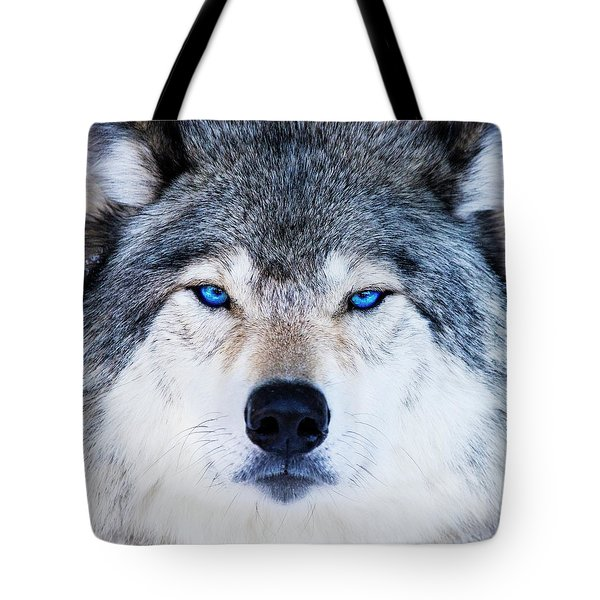 Tote Bag featuring the photograph Blue Eyed Wolf Portrait by Mircea Costina Photography