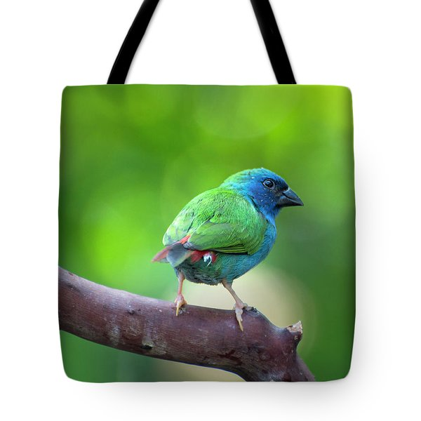 Blue-faced Parrotfinch Tote Bag
