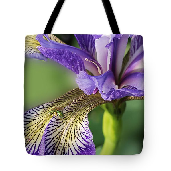 Tote Bag featuring the photograph Blue Flag  by Susan Capuano