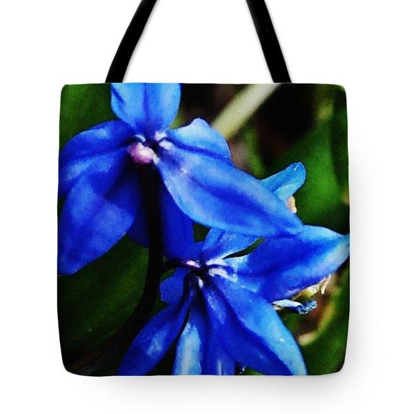 Blue Floral Tote Bag by David Lane