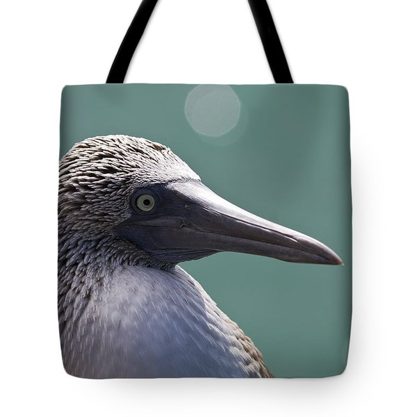 Blue Footed Booby II Tote Bag by Dave Fleetham