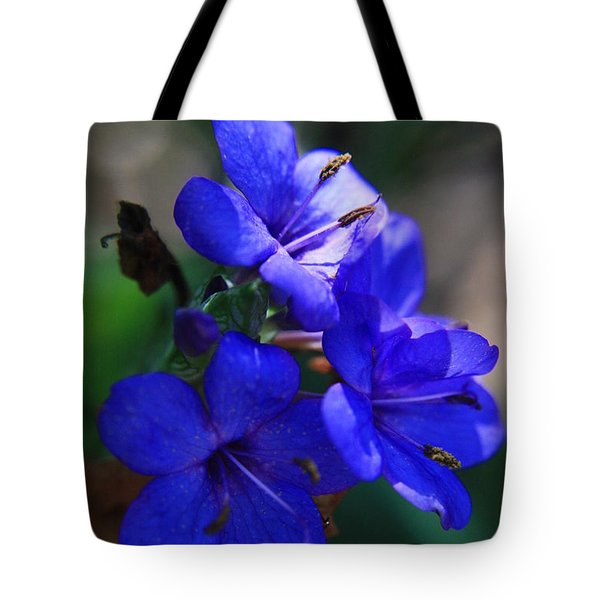 Blue For The Sun Tote Bag