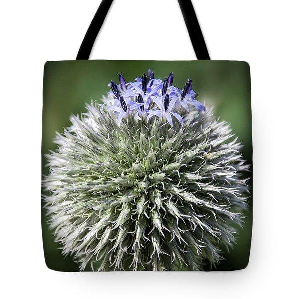 Blue Globe Thistle 3 - Tote Bag