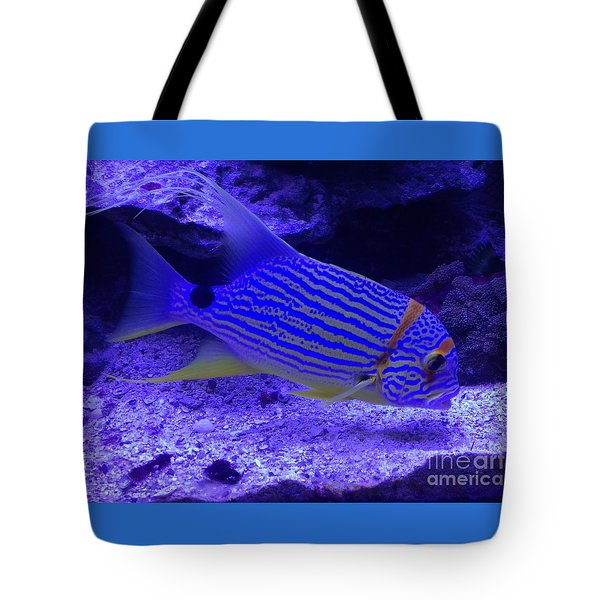 Blue Fish Groupie Tote Bag by Richard W Linford