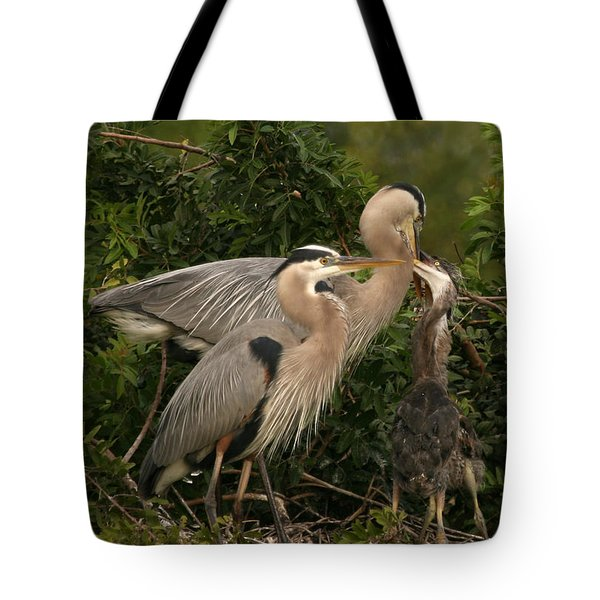 Tote Bag featuring the photograph Blue Heron Family by Shari Jardina