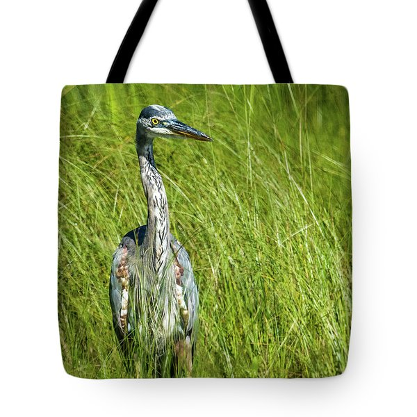 Tote Bag featuring the photograph Blue Heron In A Marsh by Paul Freidlund