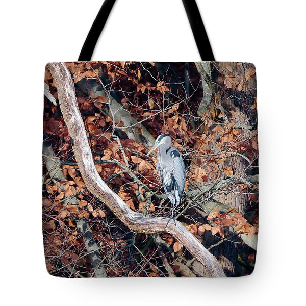 Blue Heron In Tree Tote Bag