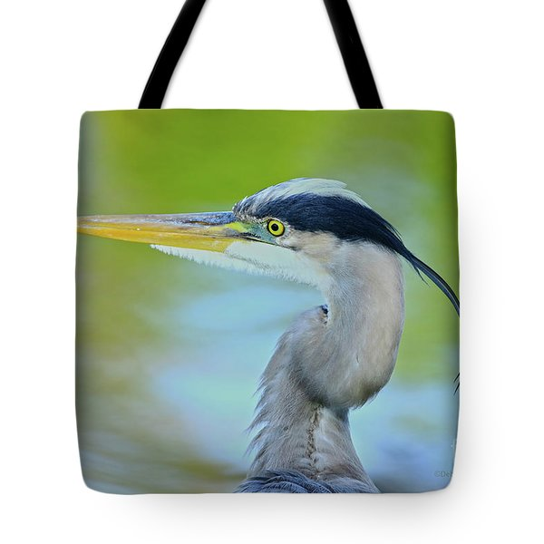Tote Bag featuring the photograph Blue Heron Portrait 2017 by Deborah Benoit