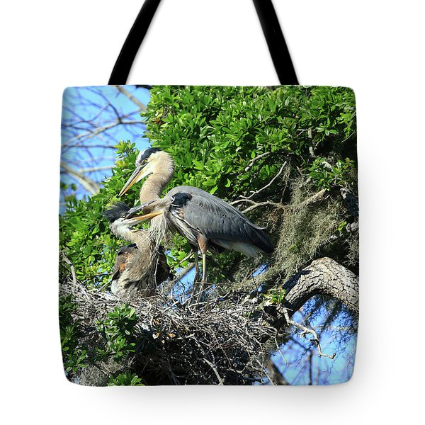 Tote Bag featuring the photograph Blue Heron Series Baby 1 by Deborah Benoit