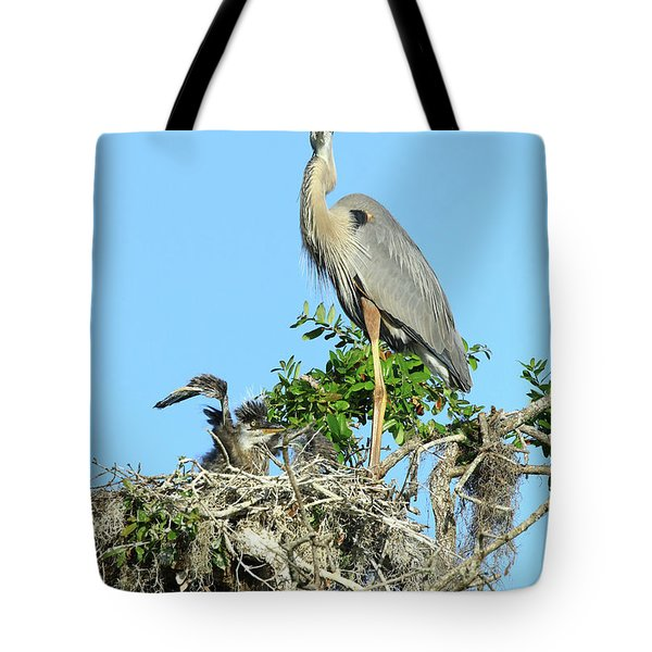 Tote Bag featuring the photograph Blue Heron Series Baby 2 by Deborah Benoit