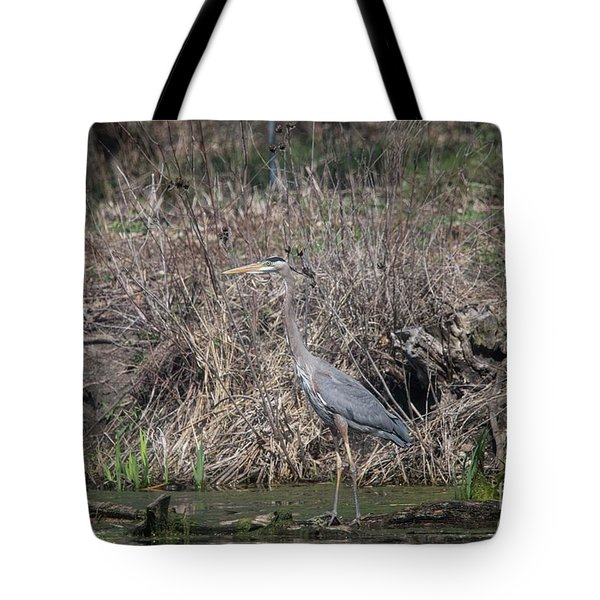 Tote Bag featuring the photograph Blue Heron Stalking Dinner by David Bearden