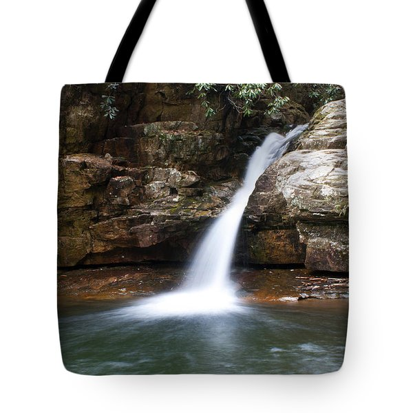 Blue Hole In Spring #1 Tote Bag by Jeff Severson