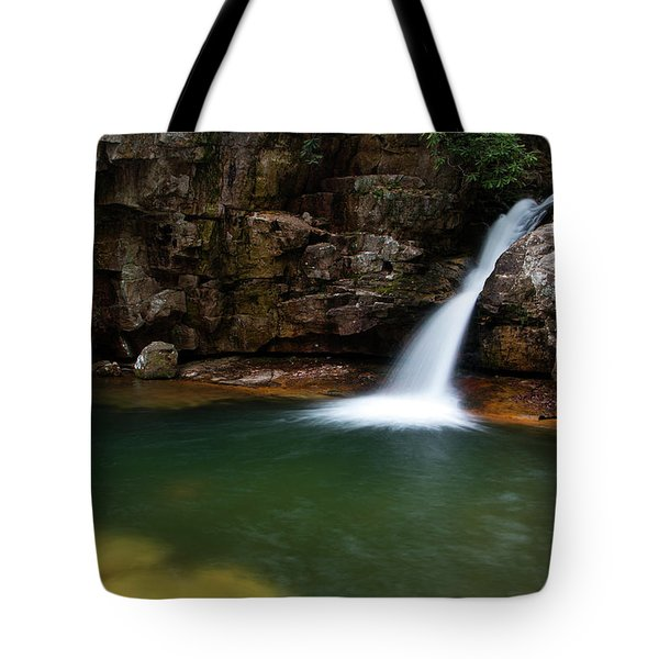 Blue Hole In Spring 2017 IIi Tote Bag