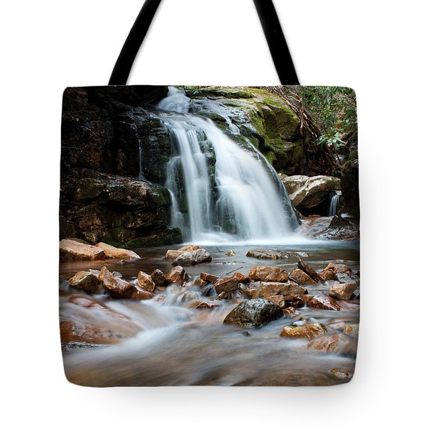 Tote Bag featuring the photograph Blue Hole In Spring #3 by Jeff Severson