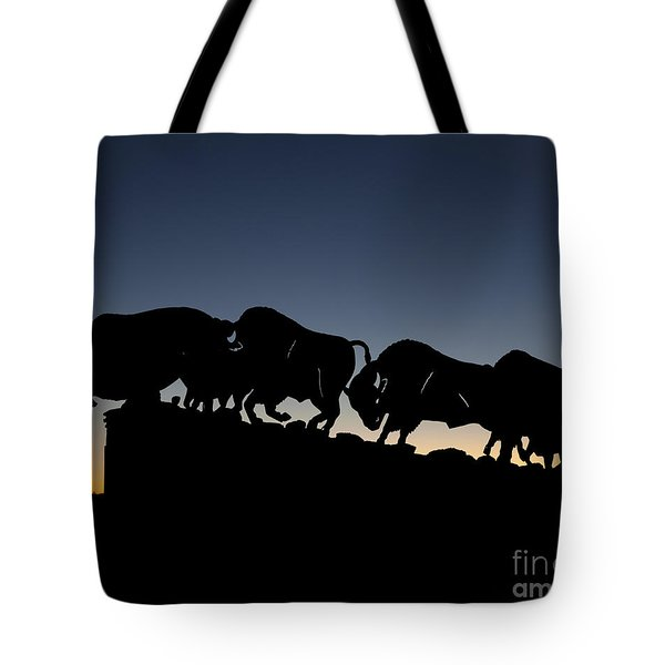 Tote Bag featuring the photograph Blue Hour 16x20 by Melany Sarafis