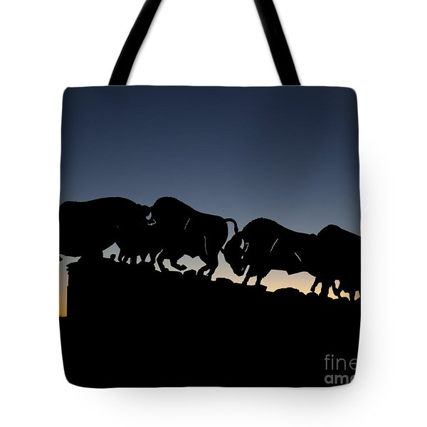Tote Bag featuring the photograph Blue Hour 24x20  by Melany Sarafis