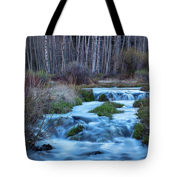Blue Hour Streaming Tote Bag by James BO Insogna