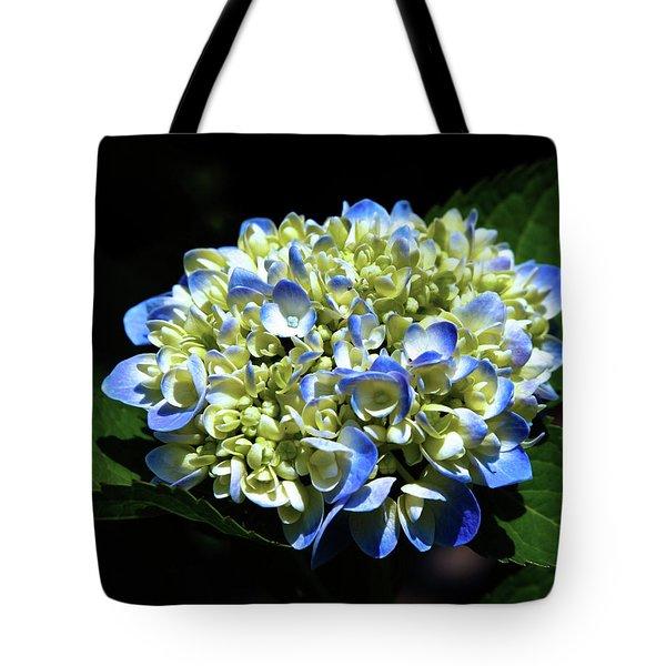 Blue Hydrangea Onstage 2620 H_2 Tote Bag