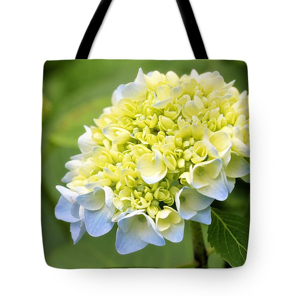 Tote Bag featuring the photograph Blue Hydrangea by Trina  Ansel