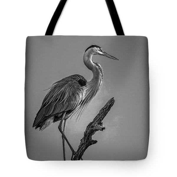 Blue In Black-bw Tote Bag