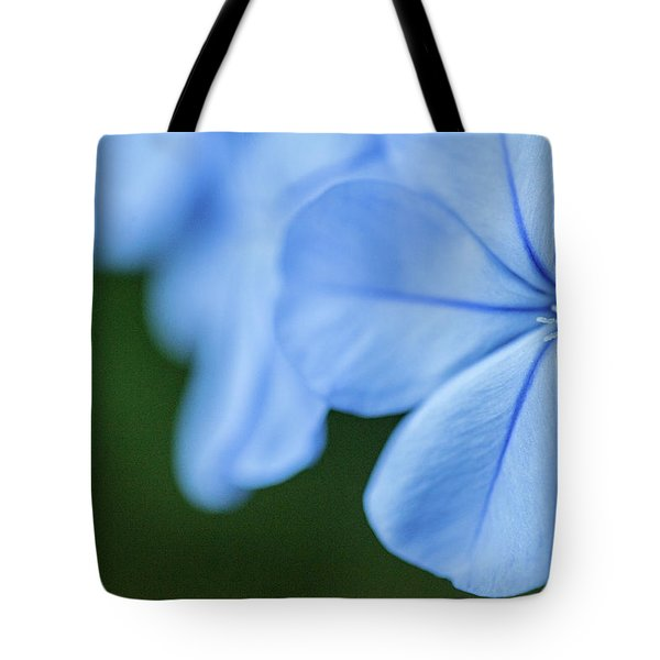 Blue In Green 2 Tote Bag