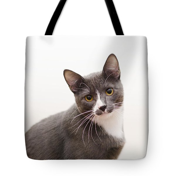 Tote Bag featuring the photograph Blue by Irina ArchAngelSkaya