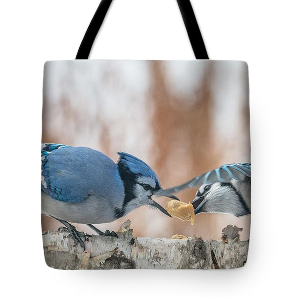 Blue Jay Battle Tote Bag by Patti Deters