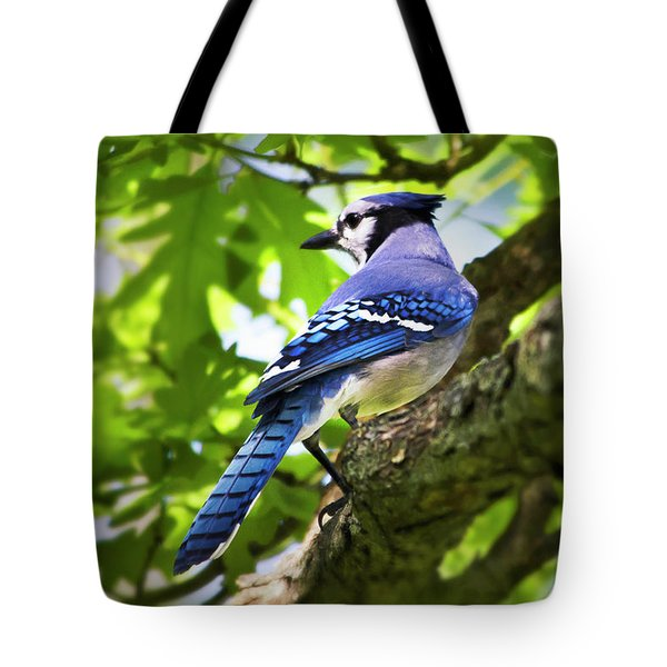 Blue Jay Tote Bag by Christina Rollo