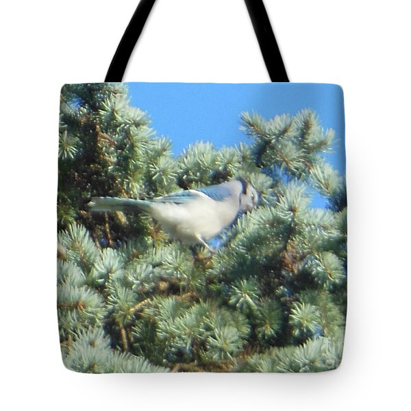 Blue Jay Colorado Spruce Tote Bag